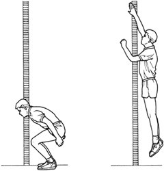 Jump To It Vertical Jump Height on car dash diagram